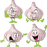 Garlic cartoon with hands and legs standing isolated Stock Image