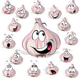 Garlic cartoon head Stock Images