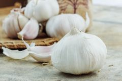 Garlic on cement and sack. Stock Photo