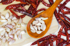 Garlic and chili. Garlic food spice eating vegetable Stock Images
