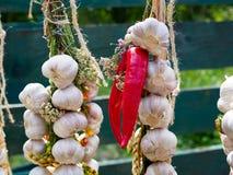 Garlic and chili pepper Stock Photos