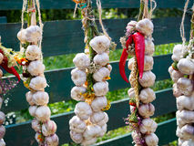 Garlic and chili pepper Royalty Free Stock Photos