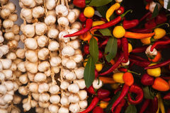 Garlic and chili peppers Royalty Free Stock Image
