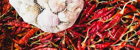 Garlic chilli, banner size used for website royalty free stock photography