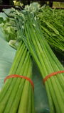 Garlic Chives. Impart oniony flavor with a distinctly garlicky overtone. Young leaves are most tender  for Asian cooking Royalty Free Stock Photography
