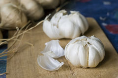 Garlic on chopping board Stock Images