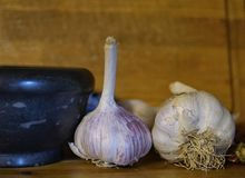 Garlic close-up food ingredients indoor cooking. Wood background macro royalty free stock images
