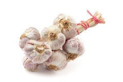Garlic closeup Stock Photo