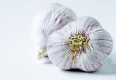 Garlic - closeup Royalty Free Stock Photos