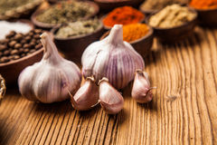 Garlic closeup Stock Images