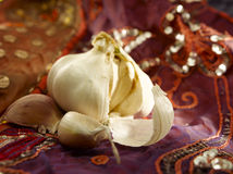 Garlic on cloth Stock Images