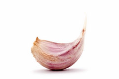 Garlic clove - Allium Royalty Free Stock Photography