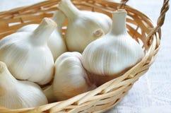 Garlic. Clove of garlic in basket stock photography