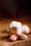 Garlic clove Stock Photography