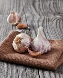 Garlic and clove close-up. Garlic and clove on wood royalty free stock photo
