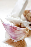 Garlic clove Royalty Free Stock Photography