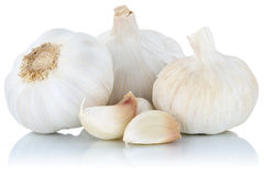 Garlic clove cloves healthy spice vegetable isolated on white Stock Photos
