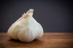 Garlic clove detail Stock Image