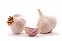 Garlic clove and garlic bulbs Royalty Free Stock Image