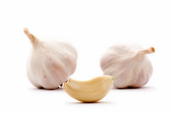 Garlic clove and garlic bulbs Stock Image