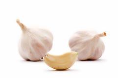 Garlic clove and garlic bulbs Stock Image