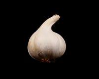 Garlic Clove Isolated on Black Royalty Free Stock Photos