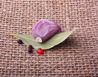 Garlic clove and laurel leaf Stock Images