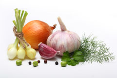 Garlic clove and onion. Garlic clove, onion and parsley leaves on white background royalty free stock photos
