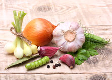 Garlic clove and onion Stock Photography