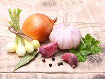 Garlic clove and onion Royalty Free Stock Photo