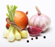 Garlic clove and onion. On white background Stock Images
