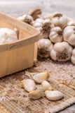 Garlic clove Stock Photography