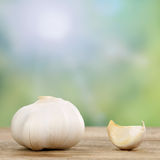 Garlic clove vegetables in summer Stock Images