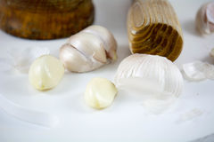 Garlic. Clove on white background Stock Image