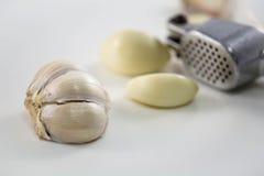 Garlic. Clove on white background Royalty Free Stock Photo