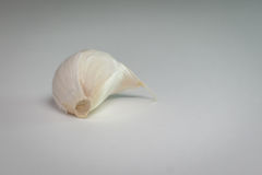 Garlic clove. With white background royalty free stock photo