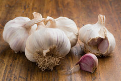 Garlic with clove Stock Images