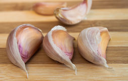 Garlic cloves Stock Images