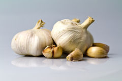 Garlic with cloves Stock Images