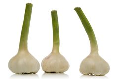 Garlic cloves. Fresh garlic cloves isolated over white background Royalty Free Stock Photo