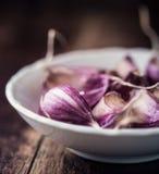 Garlic Cloves Royalty Free Stock Photos