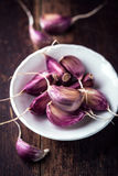 Garlic Cloves Royalty Free Stock Photography