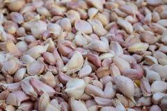 Garlic cloves Stock Image