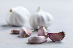 Garlic cloves. On wooden board royalty free stock image