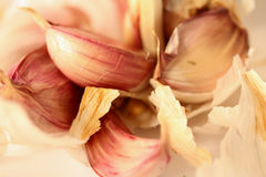 Garlic Cloves. Surrounded by their skin Stock Image