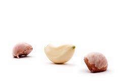 Garlic cloves Stock Photography