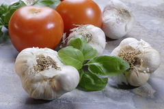 Garlic cloves, basil and tomatoes Stock Photography