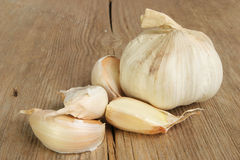Garlic cloves and bulb Royalty Free Stock Images