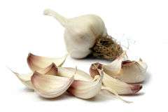 Garlic cloves and bulb Stock Images