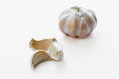 Garlic cloves and bulb isolated on white Stock Photos